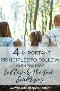 Important Principles to Follow